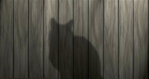 A shadow of a cat visible on a fence..jpg